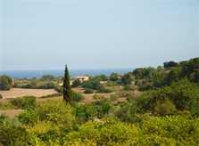 Blick in die Landschaft Finca Mallorca 10 Personen PM 5871