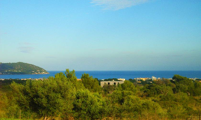 Blick Finca Mallorca 10 Personen PM 593