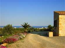 Zufahrt zur Finca Mallorca 10 Personen PM 593