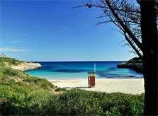 Ostküste Mallorca Strand Cala Mandia
