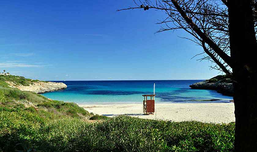 Ostküste Strand