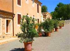 Blick auf die Finca Son Suau Vell Mallorca für 4 Personen