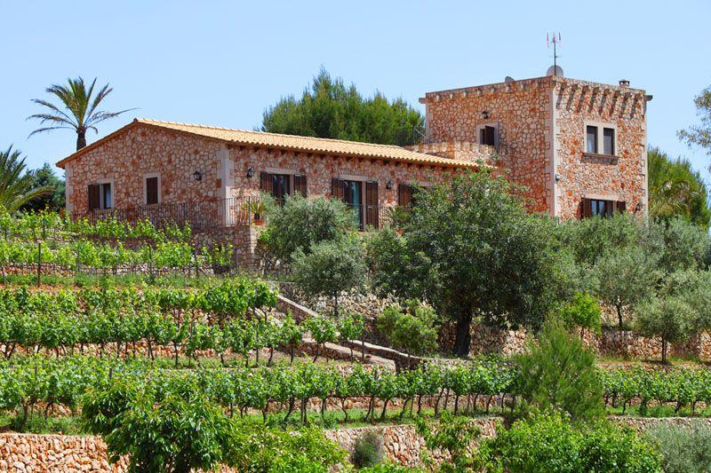 Blick auf die Finca Mallorca PM 6055