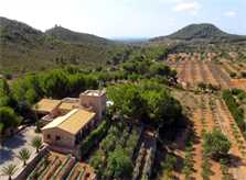 Lage der Finca 2 Finca Mallorca PM 6055 im Südosten für 10 Personen