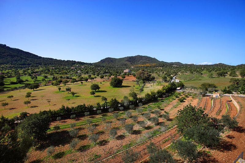 Landschaft Finca Mallorca PM 6055 im Südosten für 10 Personen