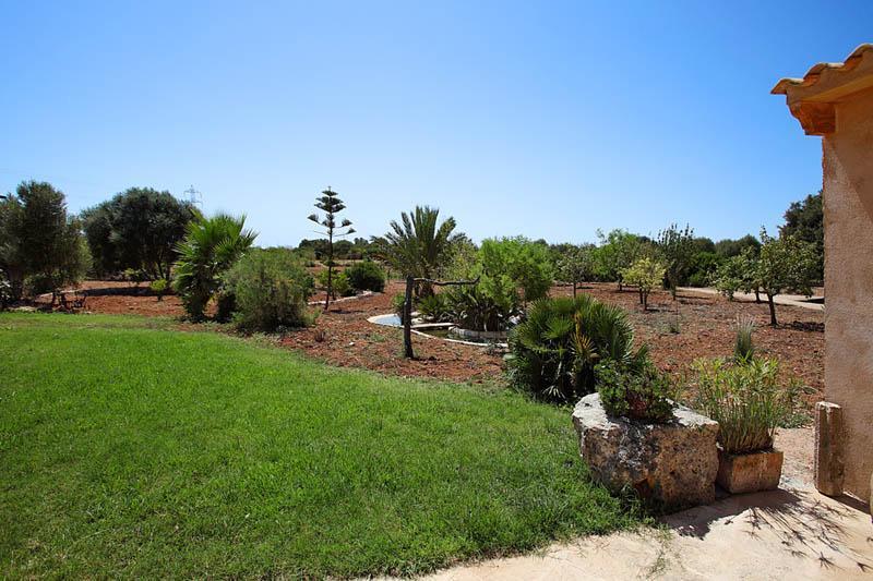 Blick in die Landschaft  Ferienfinca Mallorca PM 6056 für 12 - 14 Personen