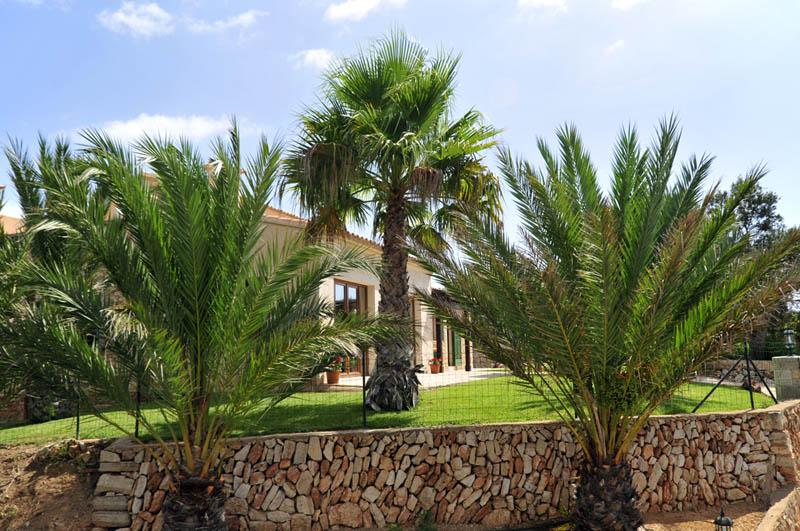 Garten der Ferienvilla Mallorca Südosten PM 6061