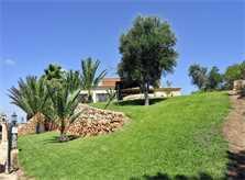 Rasenflächen der Ferienvilla Mallorca Südosten PM 6061