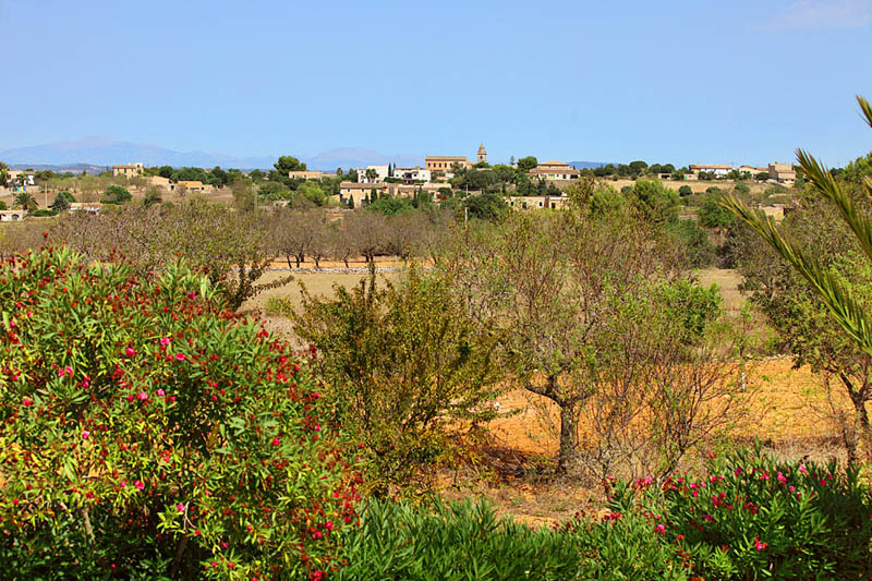 Blick auf Cas Concos Finca Mallorca Südosten PM 6062 für 6-7 Personen