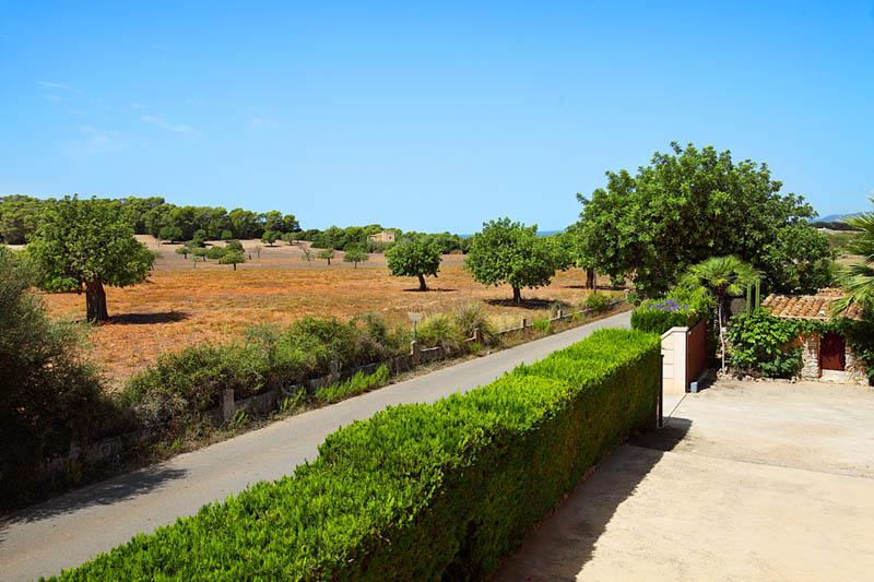 Blick in die Landschaft Finca Mallorca Südosten PM 6062 für 6-7 Personen