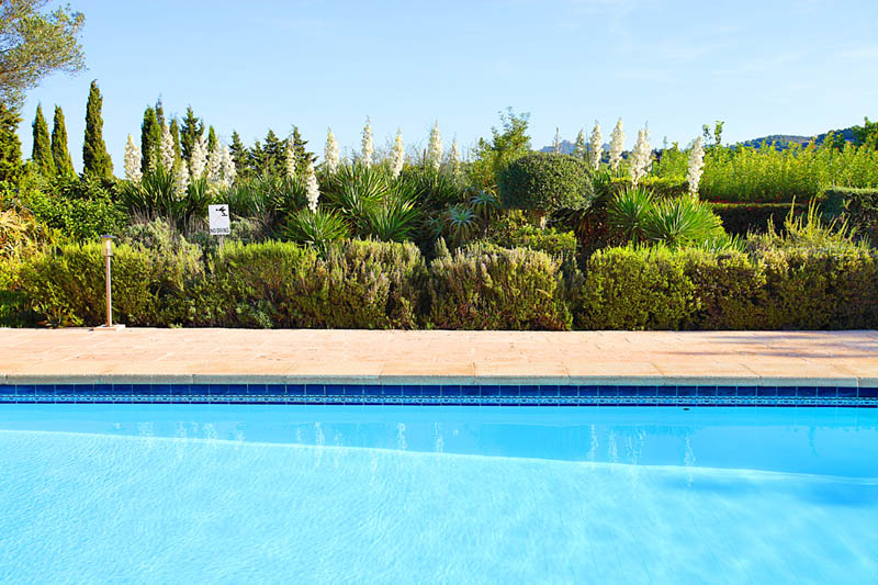 Pool der Finca Mallorca Südosten PM 6062 für 6-7 Personen