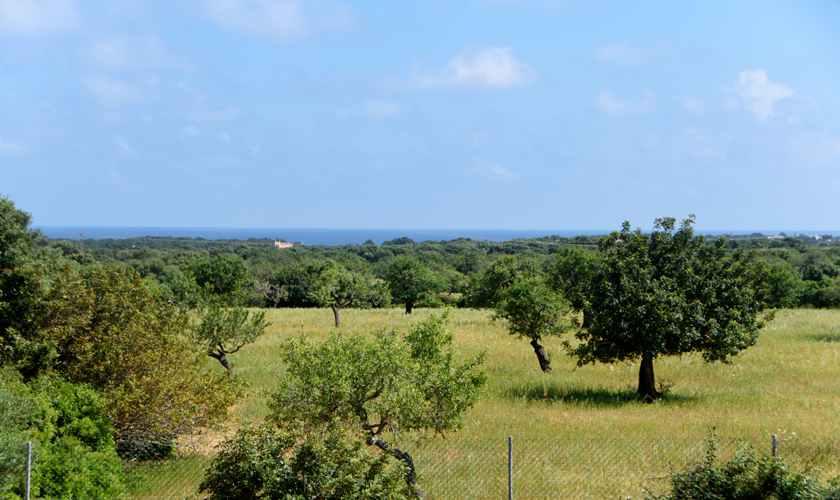 Landschaft Finca Mallorca 8 Personen PM 6075