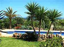 Pool und Rasen Finca Mallorca Ostküste PM 630