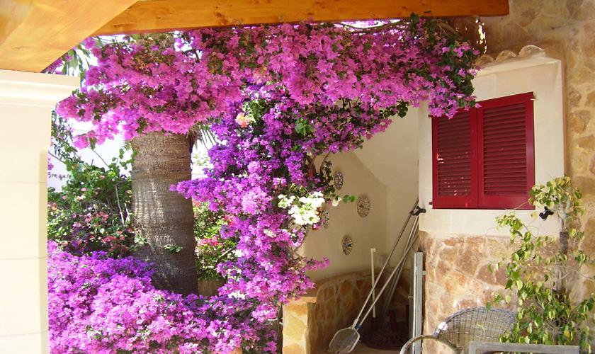 Blumen Ferienhaus Mallorca Cala Santanyi 2 Personen PM 647