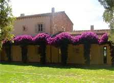 Blick auf die Ferienfinca Mallorca PM 650