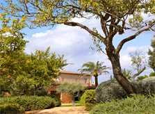 Garten Luxusfinca Mallorca Santanyi PM 650