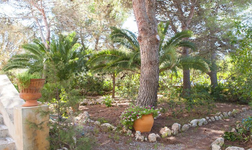 Garten Ferienvilla Mallorca 8 Personen PM 6522
