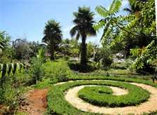 Garten Finca Mallorca Südosten für 8 Personen PM 652