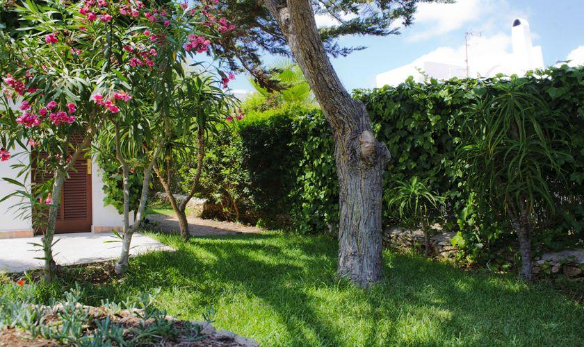 Garten Ferienhaus mit Pool Strandnah WLAN PM 6533