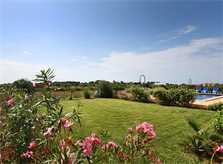 Garten und Rasen Finca Mallorca Südosten 10 Personen PM 6555
