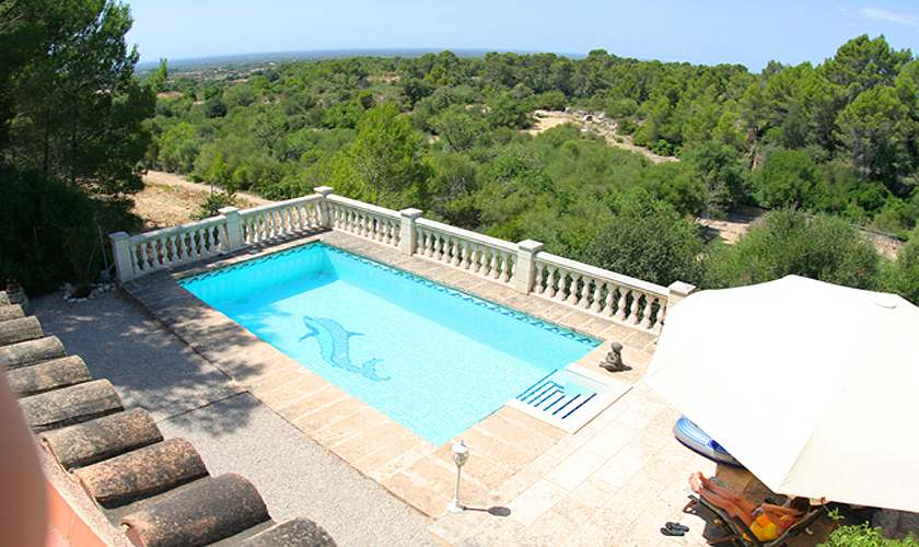 Blick auf den Pool Finca Mallorca Süden PM 6950