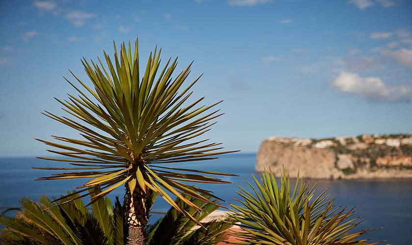 Meerblick Ferienhaus Mallorca PM 103 Nr. 72 B