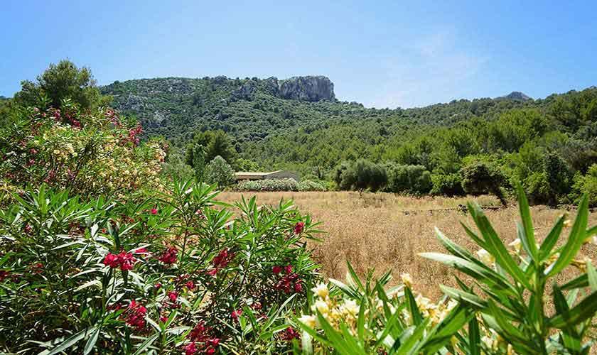 Landschaft Ferienhaus  Mallorca 6 Personen PM 3424
