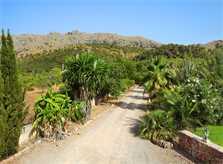 Einfahrt Finca Mallorca PM 3426 für 6-7 Personen mit Pool
