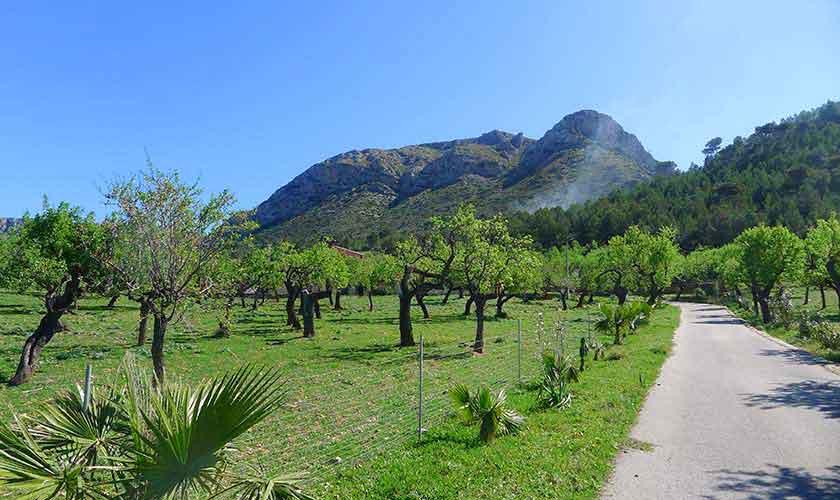 Umgebung Ferienvilla Mallorca PM 470