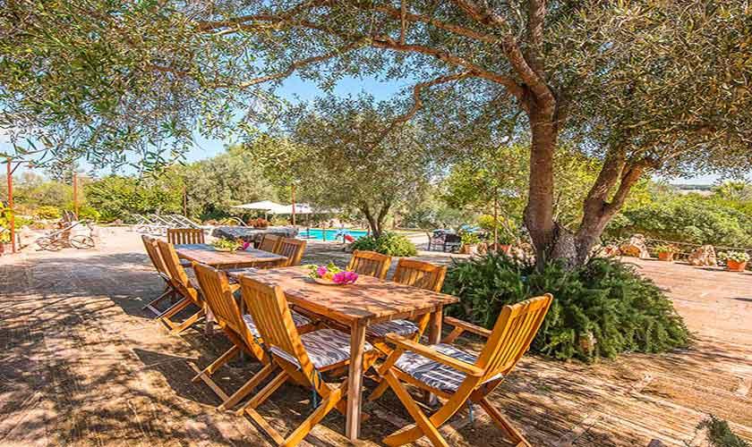 Garten Finca Mallorca Nordosten PM 5210