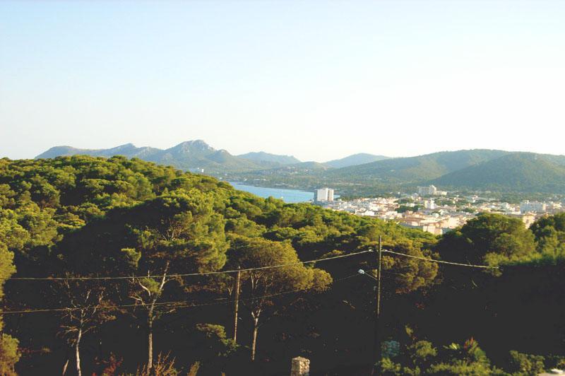 Blick von oben Ferienhaus mit Pool in Cala Ratjada PM 555