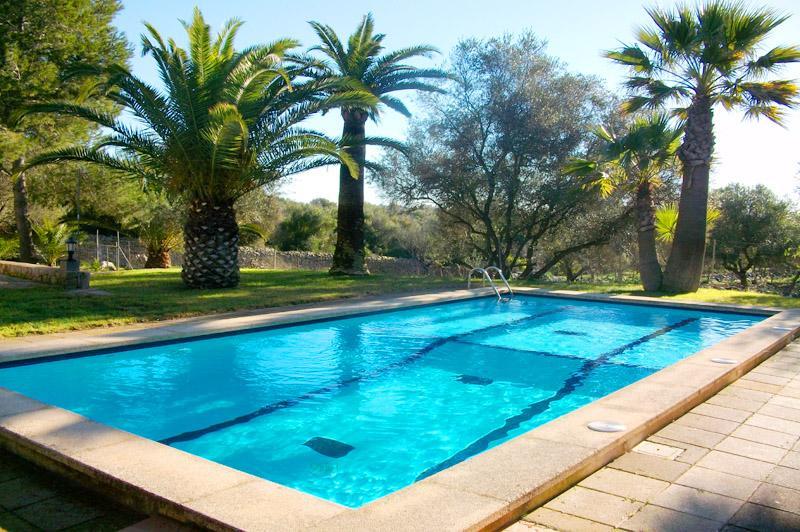 Pool und Palmen Finca Mallorca PM 572 für 6 Personen