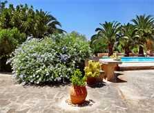 Garten Finca Mallorca Südosten mit Pool PM 6074