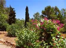 Garten 2 Finca Mallorca Südosten mit Tennisplatz PM 6074