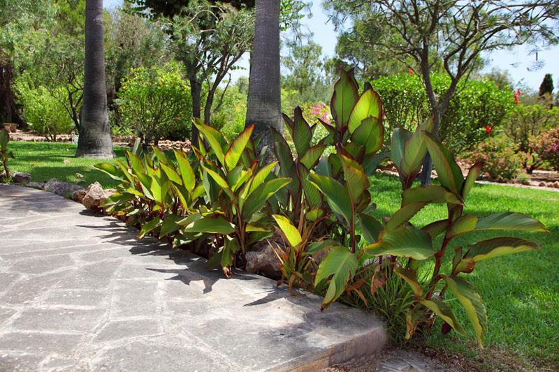 Garten 4 Finca Mallorca Südosten mit Pool und Tennisplatz PM 6074