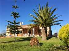 Blick auf die Finca Mallorca Ostküste PM 6343 für 6 - 7 Personen
